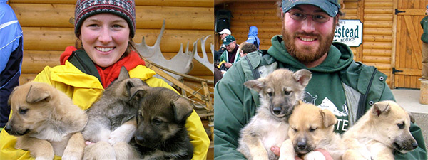 Man and woman with puppies for dog mushing