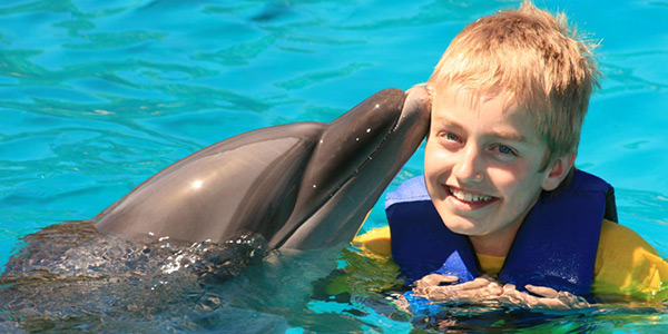 Young boy swimming with a dolphin